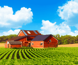 A red barn sitting on a beautiful farm in a nice summery day
